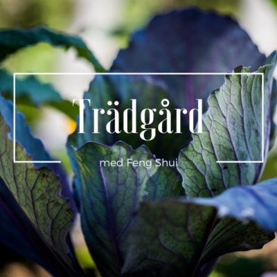Grönsaker för Familj och Hälsa
