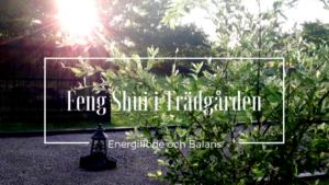 Energiflöde och Balans