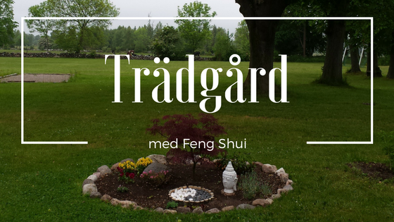 Rose´s Feng Shui blogg