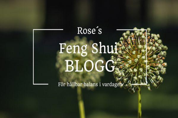 Feng Shui konsult Öland
