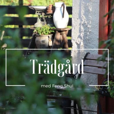 Rose´s Feng Shuiträdgård sedd genom en väns ögon