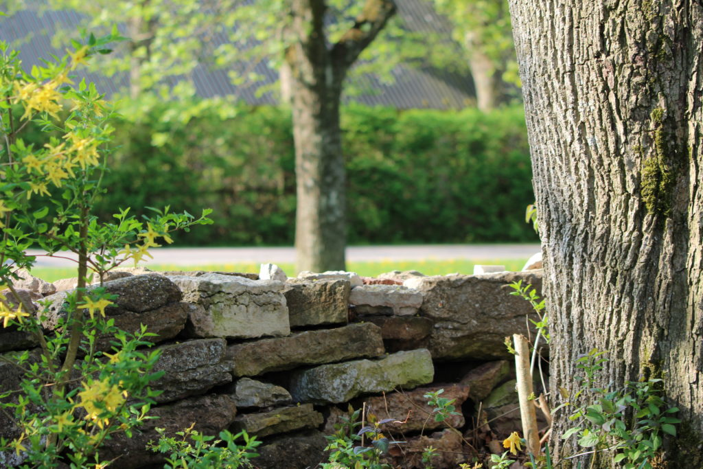Mur av Ölandssten runt Rose´s Feng Shuiträdgård