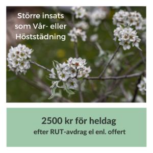 Trädgårdshjälp Öland
